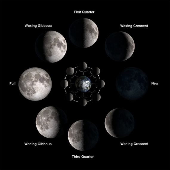 moon_phases_br-570