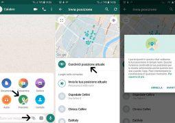 come condividere posizione in tempo reale su Whatsapp